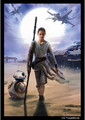 Star Wars the Force Awakens - Art Sleeve - Rey