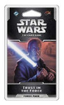 SW LCG:  Trust in the Force